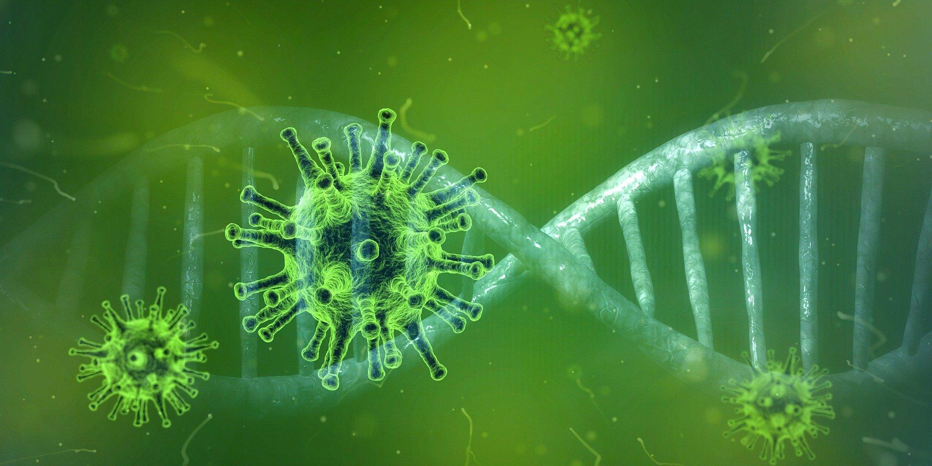 Fuentes de información para la comunidad acerca de COVID-19 (coronavirus)